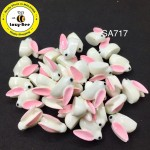 SA717: White Rabbit Resin 16x20mm, 10 pieces [ A15 ]